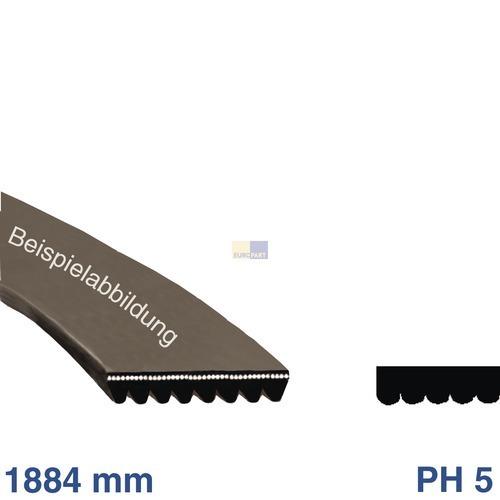 Klick zeigt Details von Keilrippenriemen 1884 PH 5 Zanussi 125502810/0 Alternative für Trockner