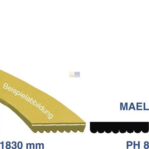 Klick zeigt Details von Keilrippenriemen 1830 PH 8 E Zanussi 125606200/9 Alternative