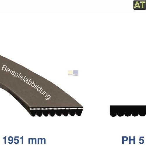 Klick zeigt Details von Keilrippenriemen 1951 PH 5 Electrolux 150612403/9 Alternative