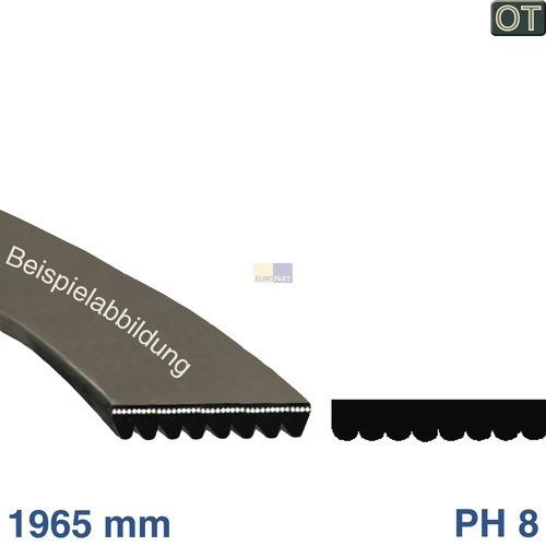 Klick zeigt Details von Antriebsriemen 1965 PH 8, TR  BSH 00657917